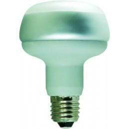 LAMPES FLUORESCENTES MRF 80...